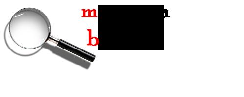 logo_borgato